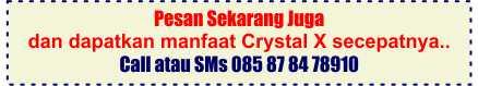 cara order Crystal X
